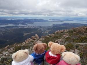 Beary Scenic Hobart