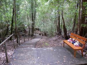 Enchanting Huon Valley