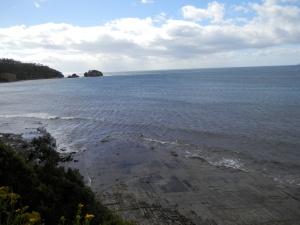 Pirates Bay, Tessellated Pavement