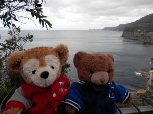 Lookout near Tasman Arch