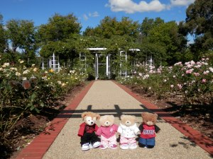 Old Parliament House Rose Gardens