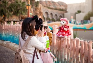 Beary practical tips for travelling in Japan
