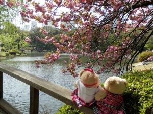 A Sunny Saturday in Tokyo