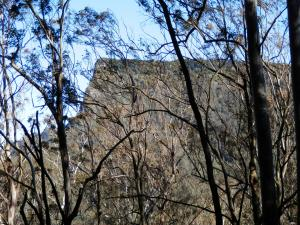 Spicers Peak