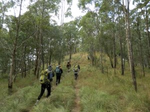 The Real Story of Hiking the Scenic Rim