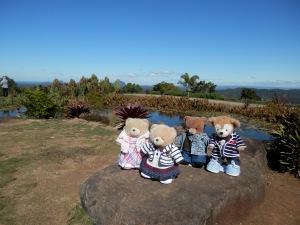 A Sunny Day at Maleny Botanic Gardens