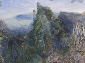 William Robinson - Tweed Valley Rainforest Ridge and Beechmont, 1999