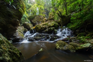 Twin Falls in Springbrook National Park