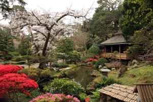 The Japanese Tea Garden opened in 1894