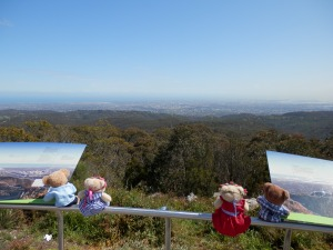 The View From Mt Lofty