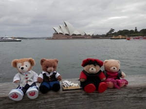 Little Bears Around Sydney