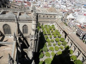 Seville Cathdral, view from the tower