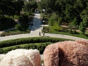 Hermann Park, McGovern Centennial Gardens, View from the mount, Sculpture walk