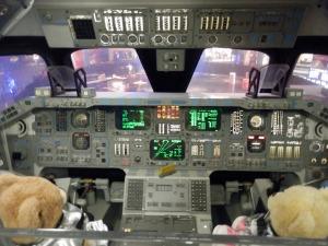 Shuttle Flight Deck, Puffles as Commander, Honey as Pilot