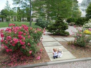 US Botanic Garden - National Garden