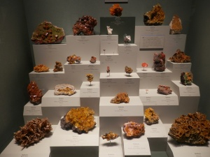 Museum of Natural History - Wulfenite, one mineral many shapes