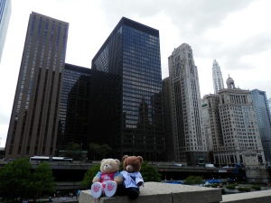 Chicago in Pictures