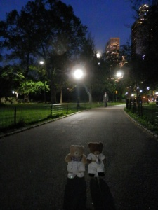 A walk in Central Park after dinner