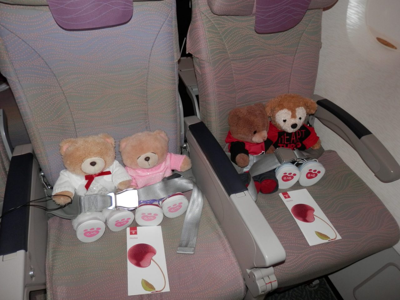 Beary Places to Visit inEurope