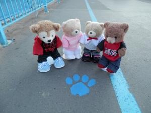 Bear trail!