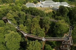 Tree-Top Walkway