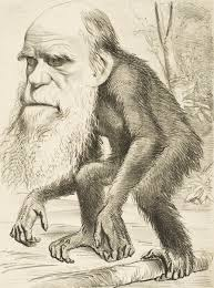 1871: In 'The Descent of Man', Darwin ties the human lineage to primate ancestors, provoking outrage in some quarters and the caricaturing of his image.