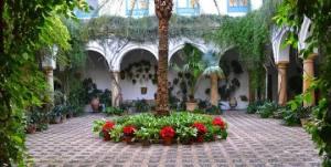 Córdoba Courtyard
