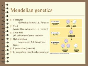 1936–1947: The modern synthesis combines Darwin's evolutionary theory with Mendelian genetics.