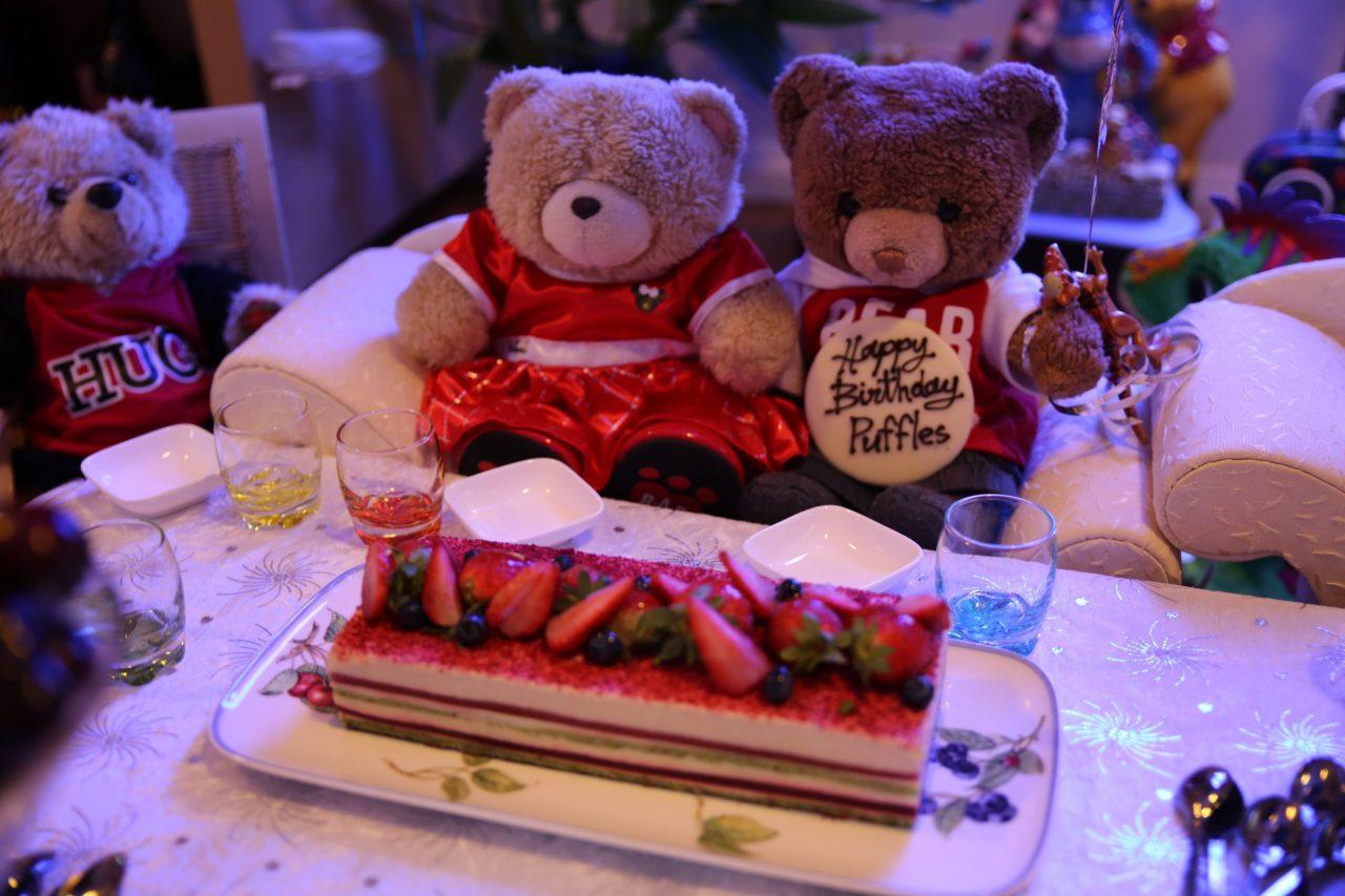 Little Puffles Big BirthdayAdventure