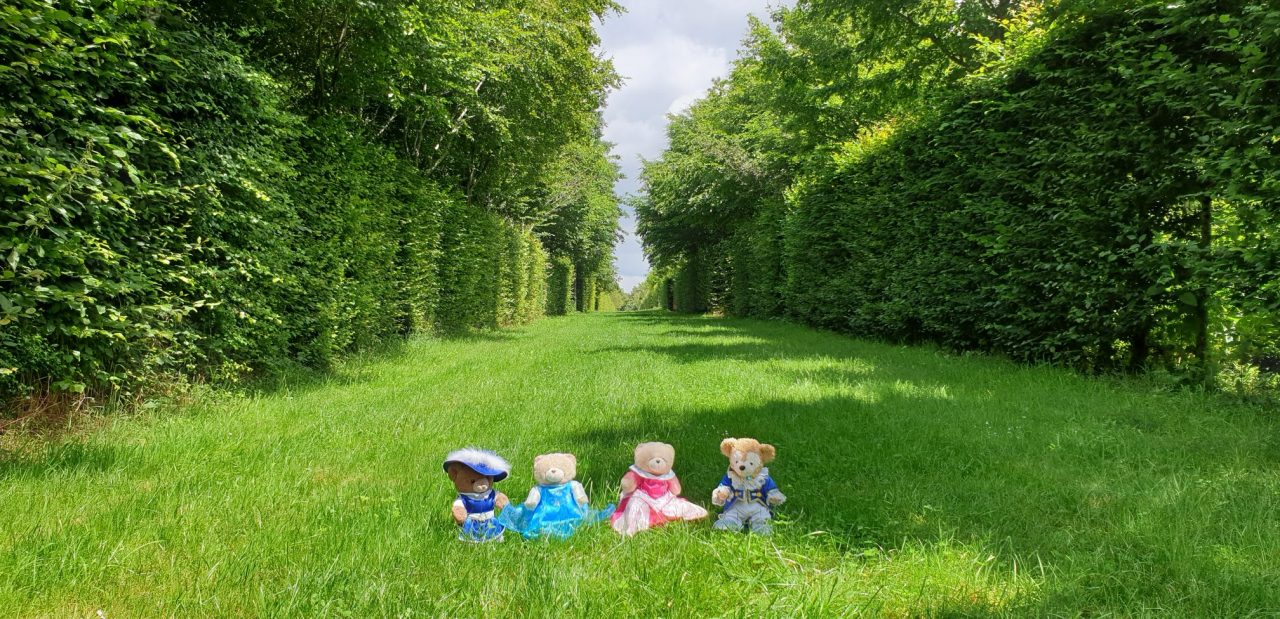 A Walk in the Gardens ofVersailles